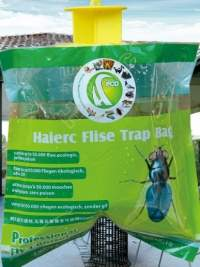 Flying Insects - Trapping Options